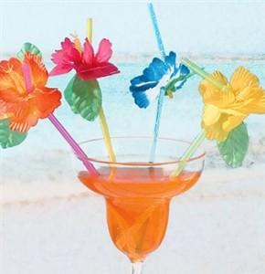 Tropical Sweet 16 Flower Straws